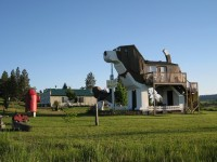 Unsual Hotels Around the World - Dog Bark Park Inn