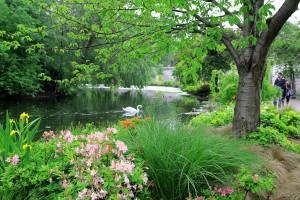 Royal Garden London