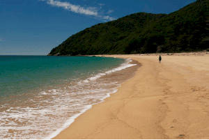 Golden Bay – New Zealand
