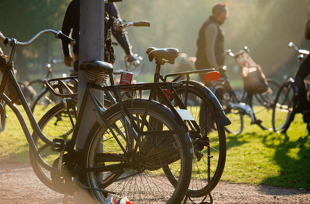 5 Best Cycle Routes Around Amsterdam, Netherlands