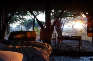 BEST LUXURY SAFARI Chada