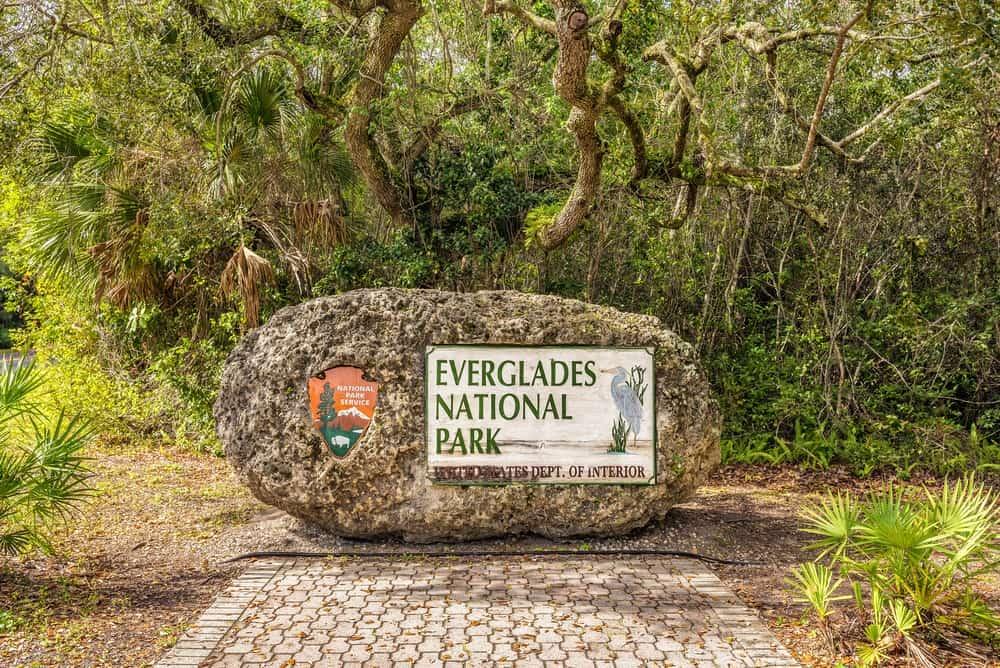 Best Time to Visit Everglades National Park, Florida