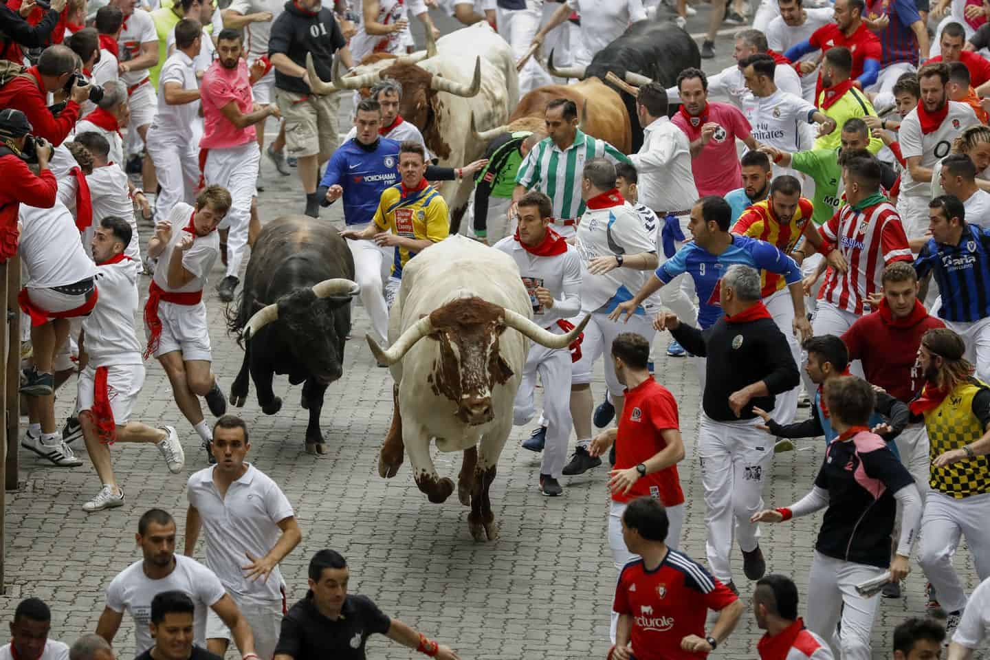 How to Survive the Pamplona Running with the Bulls In Spain